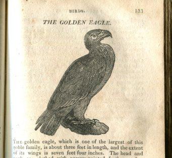 Natural History 150