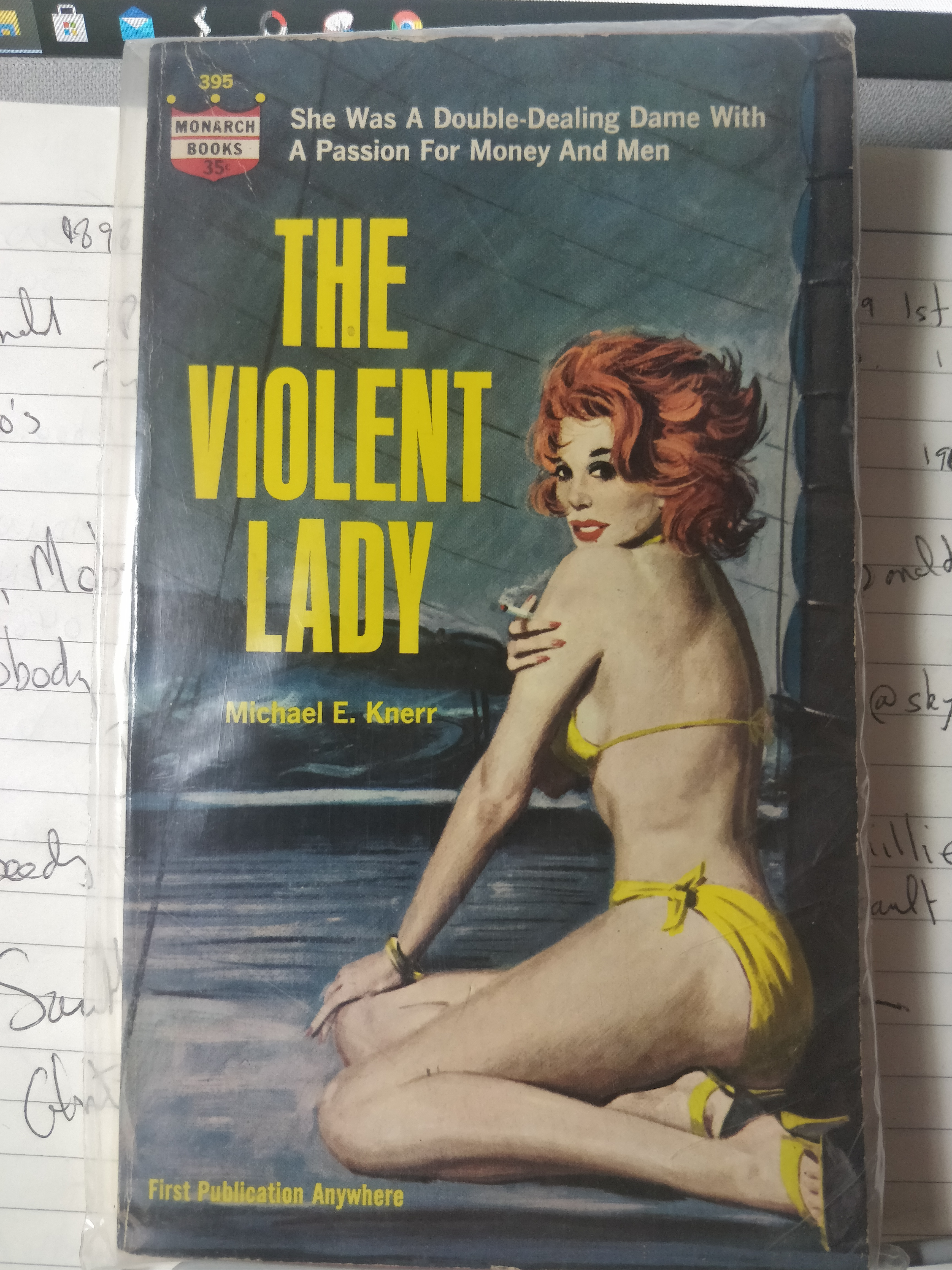 the-violent-lady